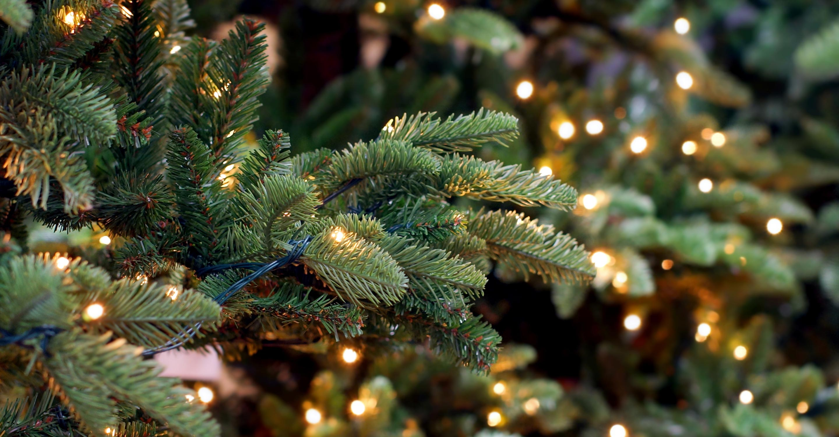"""How to avoid """"Christmas Tree Syndrome"""""""