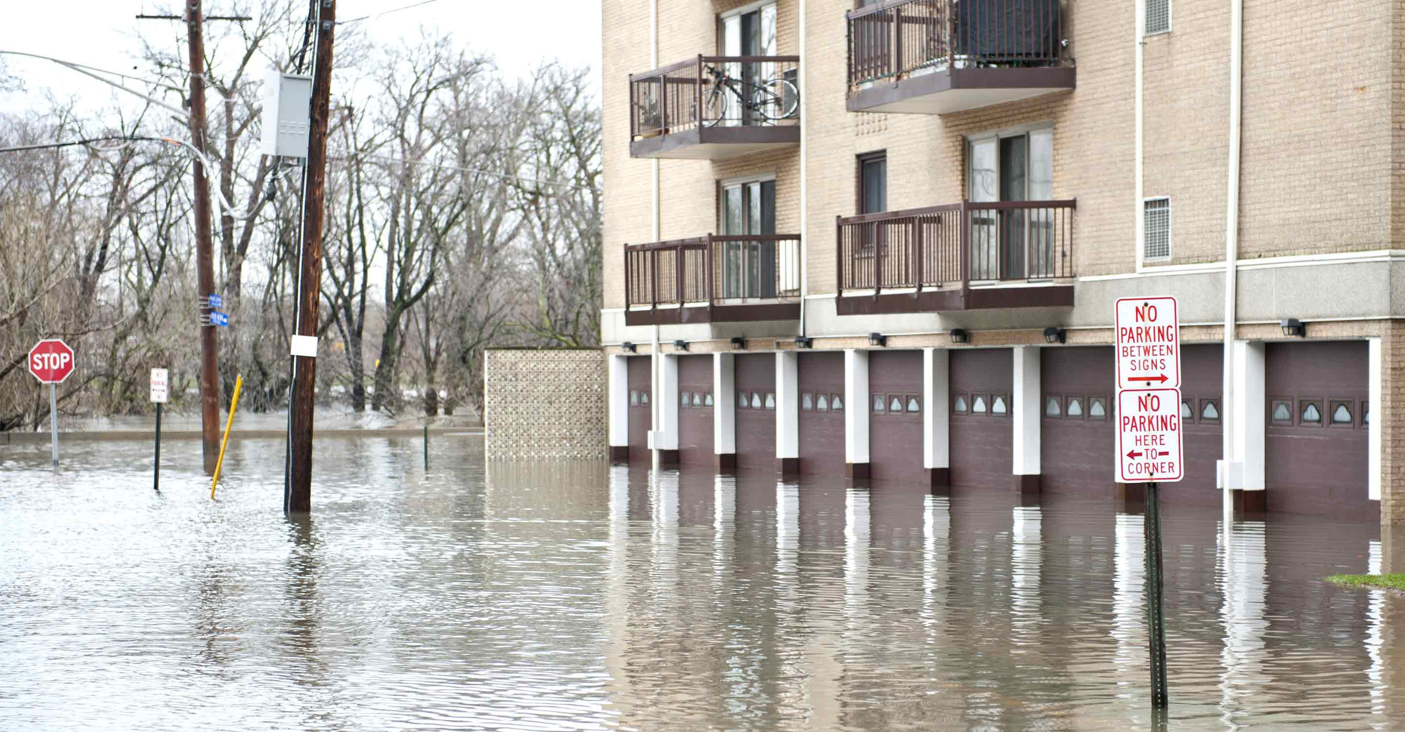 8 tips for mould prevention after a flood