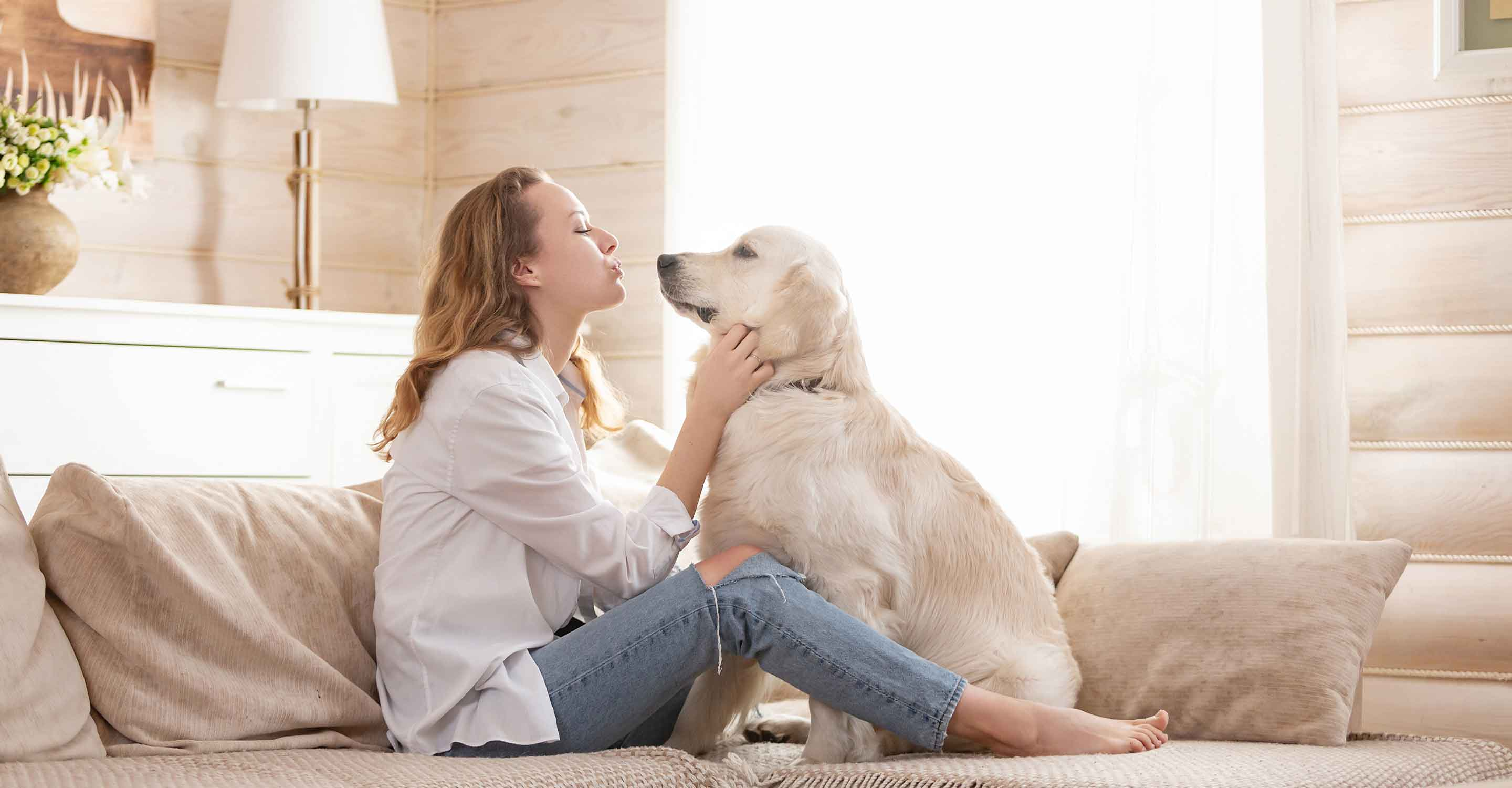 How to coexist with pets and allergies