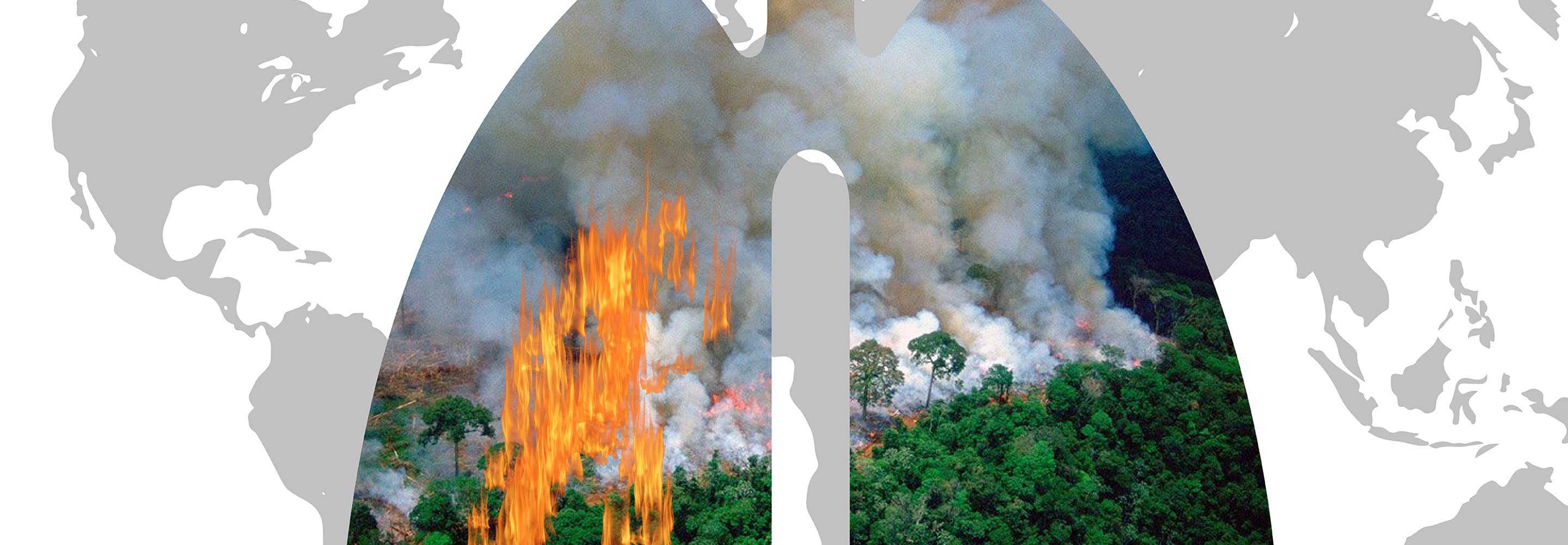 The Amazon rainforest is burning at a record pace, threatening the prosperity of the planet